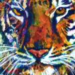 Tiger Wading Through Lake by Ruth Burton Artist
